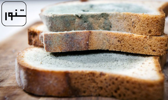 کپک نان